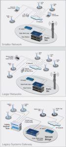 Topologie trunkových sítí
